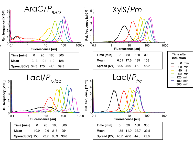 Figure 3: The results from the flow cytometry analysis showing the distribution of frequencies versus the fluorescence of the four systems used. The cells were induced at t=0. From this can been seen that for example The LacI/Ptrc complex shows an very fast onset time. (Adopted and modified from [1])