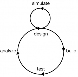 An improved version of the design cycle proposed by Tom Knight
